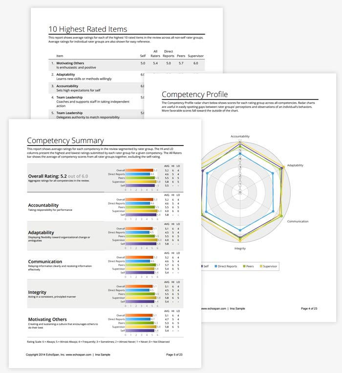 EchoSpan 360-Degree Feedback Report Images